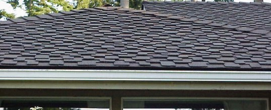 Why tallahassee homes have architectural roofing shingles for Names of roofing materials