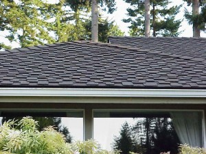 Dave's Roofing installs Architectural Roofing Shingles